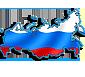 Парламентская система России – история и современность